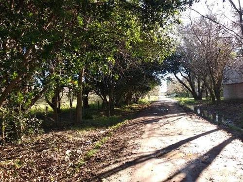 Quinta En Venta En San Vicente