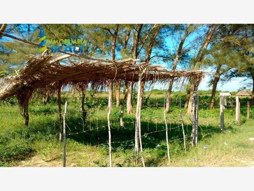 Imagen 1 de 12 de Terreno En Venta Tamiahua