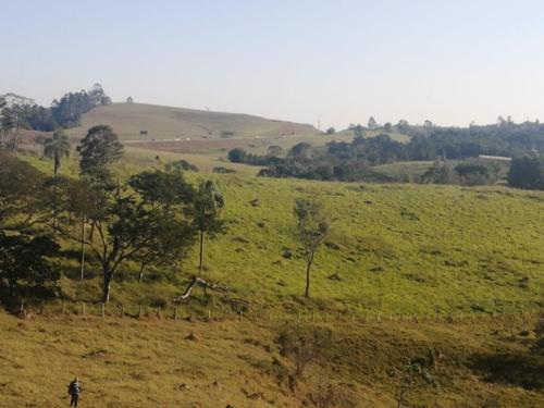 16- Terrenos De 5000m Com Ótima Topografia  A Venda