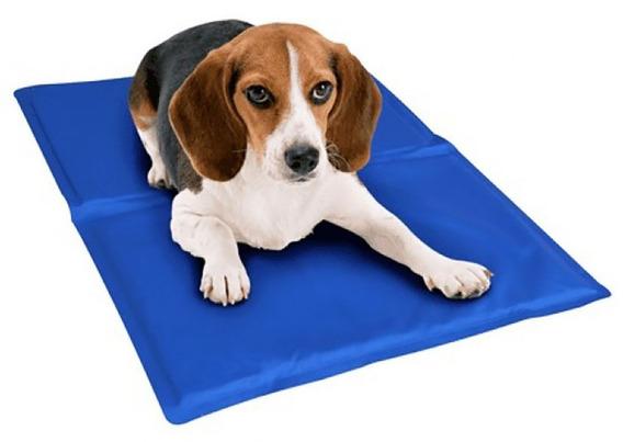 Tapete Pet Gel Refrescante Cães - 40x50 Bordas Reforçadas