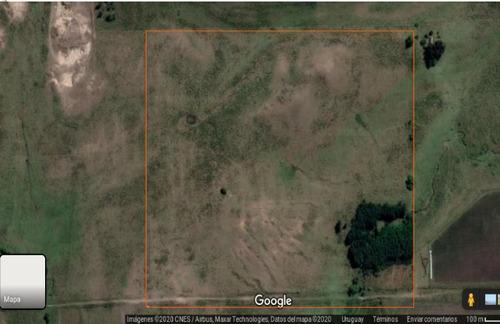 Campo De 16 Hectáreas, A 14 Kms De San Jacinto