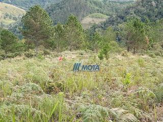 Vende Área Para Sitio Itaperuçu Com 23 Alqueires, Aproximado 80% Aberta Em Pastagem, A Região Dessa Propriedade E Apropriado Para Reflorestamento - Si0018