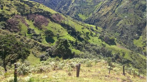 Terreno Con Vertientes Naturales
