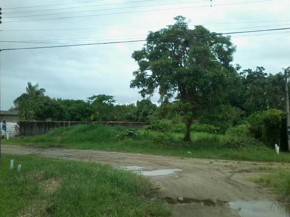 Sitio Em Peruibe-metragem Boa-são Paulo - Sp794