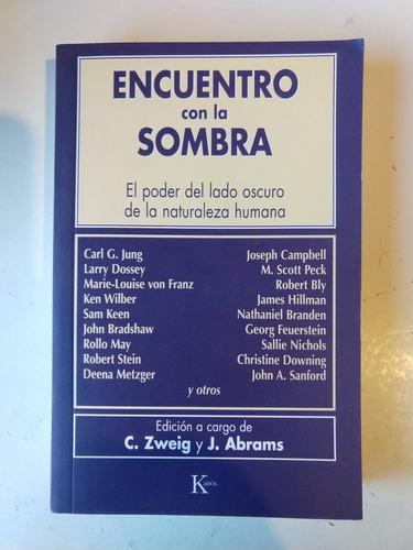 Imagen 1 de 1 de Encuentro Con La Sombra Zweig Abrams Editores