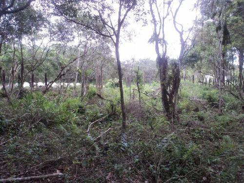 Chácara Em Itanhaém Com 17000m² Total 3599