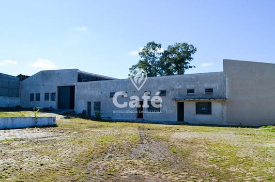 Pavilhão Com 700m², 7 Peças Internas, 5 Banheiros, 2 Boxes De Garagem. - 1809