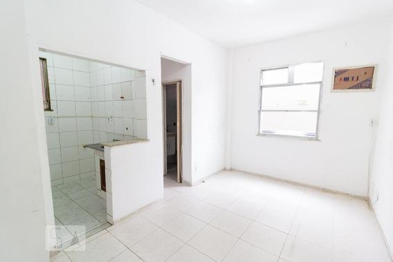 Apartamento Para Aluguel - Engenho Novo, 1 Quarto, 45 - 893093118