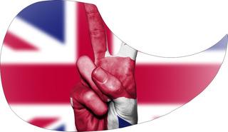Escudo Palheteira Resinada Violão Aço Sônica Britain Peace