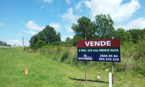Terreno De 6 Ha Sobre Ruta Interbalnearia Próximo A Camino De Los Horneros