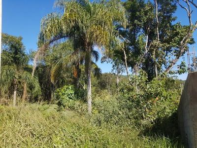 Mairiporã Mato Dentro Terreno 2.000 Metros Com Lago