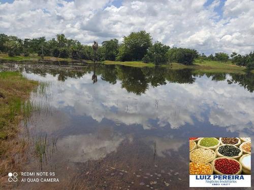 Imagem 1 de 15 de Fazenda Á Venda Em Cristalândia 503.36 Hectares (dupla Aptidão) - 1628