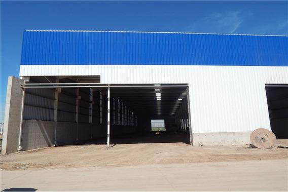 Galpón En Alquiler Micro Parque Industrial Alvear
