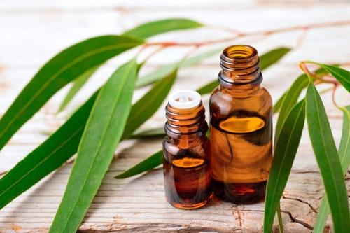 Aceite Esencial Para Cremas X1l Eucalipto