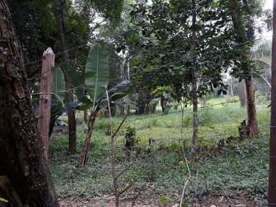 (c) Terreno A Venda Em Santa Isabel De 1.000m² No Asfalto