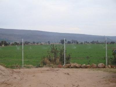 La Cofradia, Tototlan