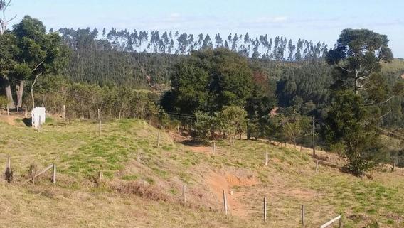 Ótimo Terreno, Com 02 Platôs Feitos, Localizado Em Bairro Tranquilo E Povoado, À Venda, 2600 M² Por R$ 110.000 - Te0085