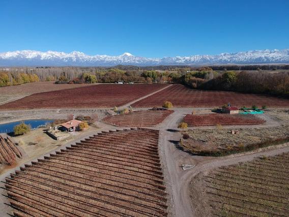 Cabaña Del Alto Tupungato Valle De Uco Mendoza Casa De Campo