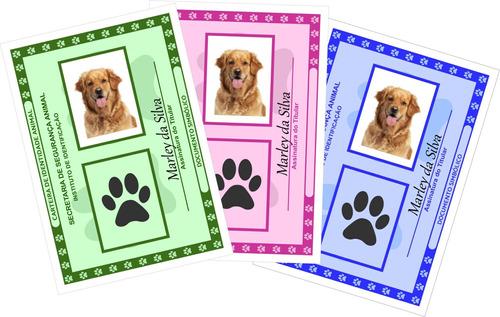 Carteira De Identidade Rg Pet - Produto Digital