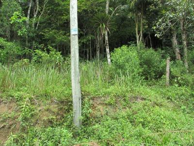 Terreno Condomínio Fechado/segurança/moradia/ref: 04528