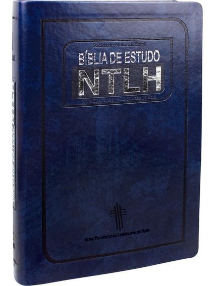 Bíblia Sagrada De Estudo Na Linguagem De Hoje | Azul Ou Rosa