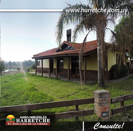 Chacra Venta Próximo A Toledo Con Gran Lago Harretche