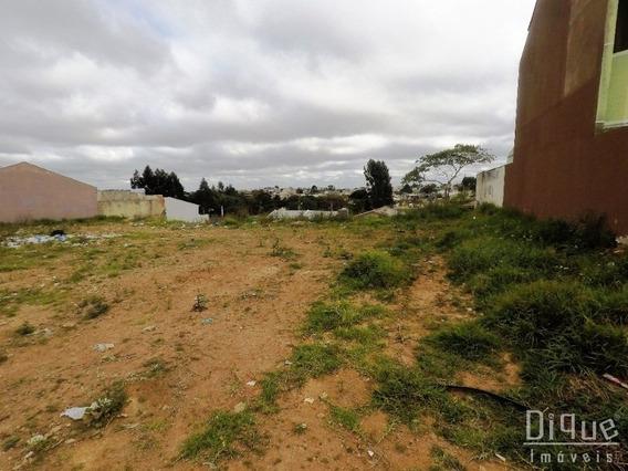 Terreno Residencial A Venda - Bairro Gralha Azul - Te0138 - Te0138 - 32895458