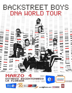 2 Entradas Backstreet Boys - Dna World Tour - Vip Top Centro