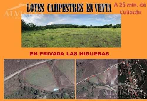 Terrenos En Venta Las Higueritas