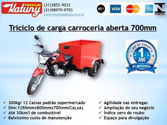 Triciclo De Carga Caçamba 700mm