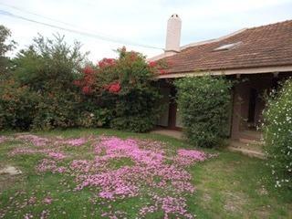 Permuta Casa Solymar 3 Dormitorio Terreno De 1125 M Verdes