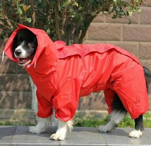 Capas Impermeables Para Perros