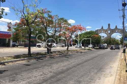 Terreno En Venta En Pinos, Mérida