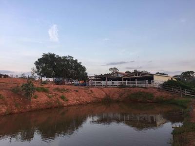 Excelente Fazenda Goiás