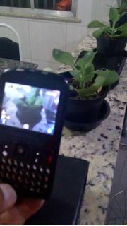 Celular Motorola Modelo Ex-115. No Estado.