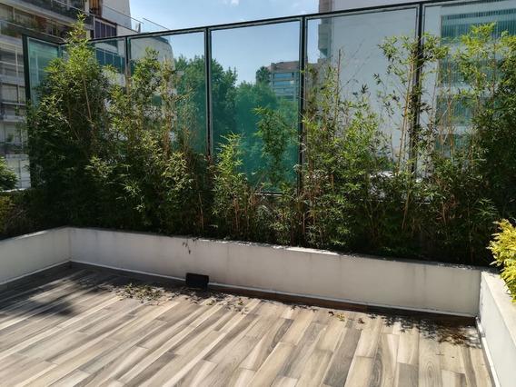 Ph De 2 Recamaras Con Roof Garden En Masaryk