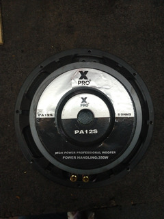 Parlante Xpro Pa12s