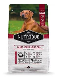 Alimento Nutrique Large Young Adult Dog perro adulto raza grande 15kg