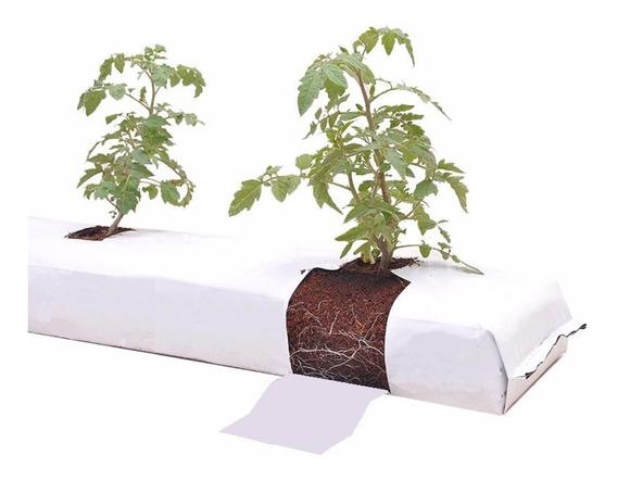 lingzhuo-shop T/ótem De Fibra De Coco Palo De Musgo De Fibra De Coco 30 // 45cm Plantas De Interior Trepadoras Poste De Soporte De Plantas para Extensi/ón De Soporte De Plantas Enredaderas
