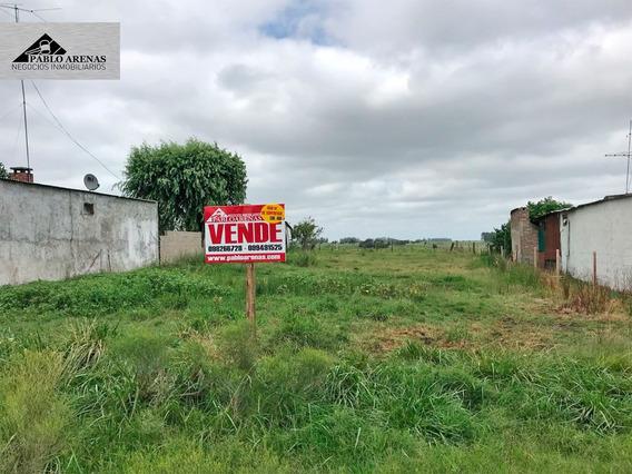 Terreno En Venta - Tarariras - Colonia #499
