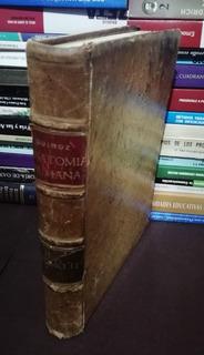 Tratado De Anatomía Humana - Tomo 2 Quiroz 5a Edición 1965