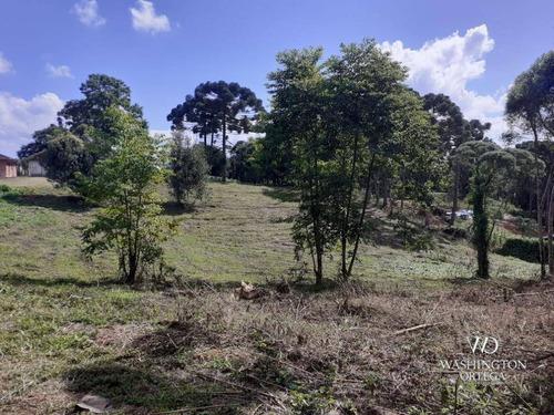 Chácara À Venda, 34000 M² Por R$ 1.900.000,00 - Colônia Murici - São José Dos Pinhais/pr - Ch0061