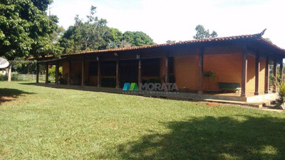Fazenda Pecuária 700 Ha Felixlândia (mg) - Cod: Mta768