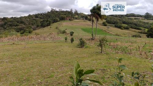 Imagem 1 de 30 de Chácara A Venda No Bairro Centro Em Morro Redondo - Rs.  - 2181-1