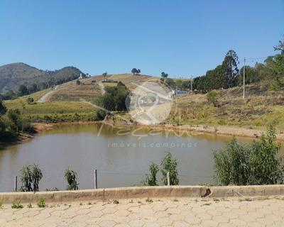 Terreno Para Venda Na Cidade De Lambari , Minas Gerais. - Te00145 - 4914811