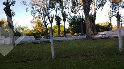 Terreno - Zona Rural - Ref: 209098 - V-209098