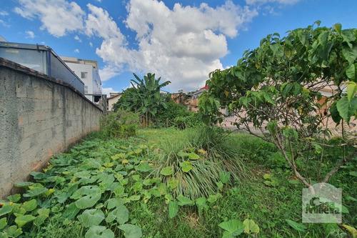 Imagem 1 de 15 de Lote À Venda No Nova Granada - Código 277710 - 277710