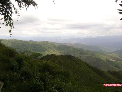 Terreno En Venta En Miranda - Valles Del Tuy