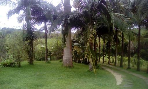 Chácara Com 2 Dormitórios À Venda, 16500 M² Por R$ 200.000,00 - Zuna Rural - Juquiá/sp - Ch0045