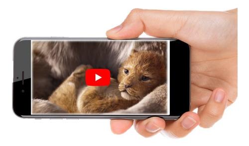Imagen 1 de 10 de Invitación Digital En Vídeo De Rey Leon Baby Shower Bautizo